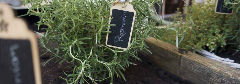 Hochbeet aus Holz für Garten und Zuhause